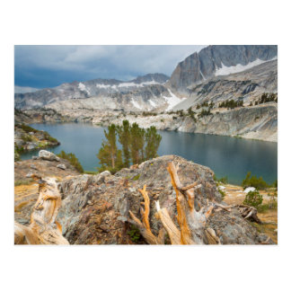 USA, California, Inyo National Forest. Postcard
