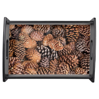 USA, California, Inyo National Forest Serving Tray