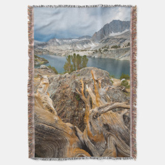 USA, California, Inyo National Forest. Throw Blanket