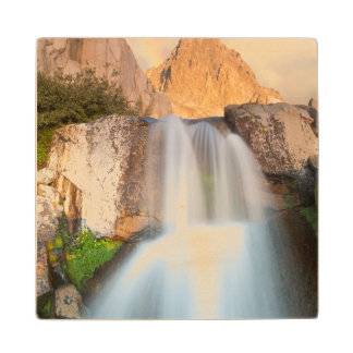 USA, California, Inyo National Forest. Waterfall Wood Coaster