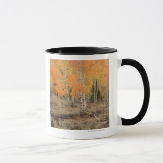 USA, California, Inyo National Park , Red aspens Mug