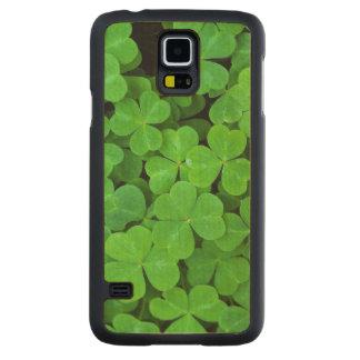 USA, California, Jedediah Smith Rewood SP. Carved Maple Galaxy S5 Case