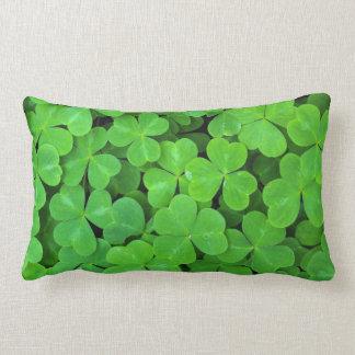 USA, California, Jedediah Smith Rewood SP. Lumbar Cushion