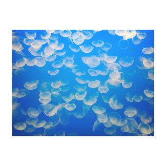 USA, California. Jellyfish In The Monterey Bay Canvas Print