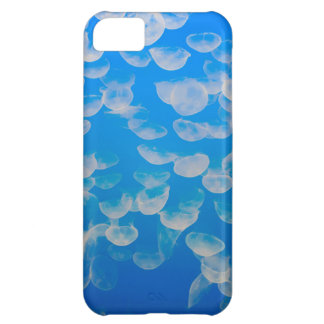 USA, California. Jellyfish In The Monterey Bay iPhone 5C Case