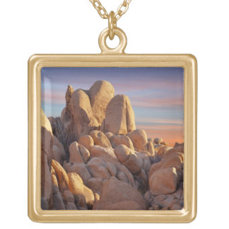 USA, California, Joshua Tree National Park Gold Plated Necklace