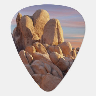 USA, California, Joshua Tree National Park Guitar Pick