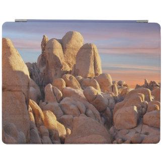 USA, California, Joshua Tree National Park iPad Cover