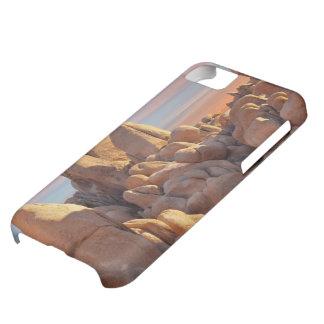 USA, California, Joshua Tree National Park iPhone 5C Case
