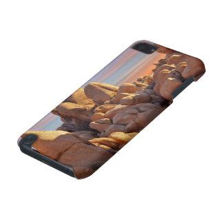 USA, California, Joshua Tree National Park iPod Touch 5G Cover