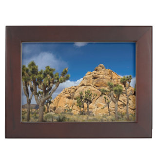 USA, California, Joshua Tree National Park Keepsake Box