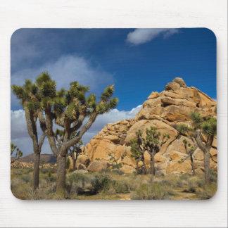 USA, California, Joshua Tree National Park Mouse Mat
