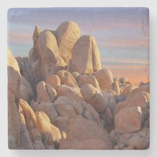 USA, California, Joshua Tree National Park Stone Coaster