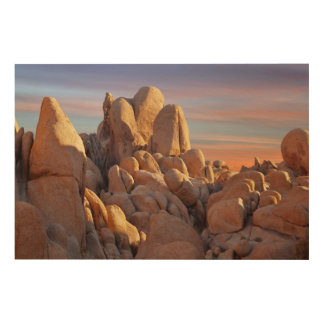 USA, California, Joshua Tree National Park Wood Print