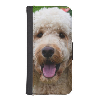 USA, California. Labradoodle Looking At You iPhone SE/5/5s Wallet Case