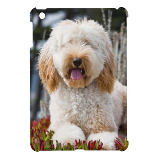 USA, California. Labradoodle Lying In Ice Plant iPad Mini Case