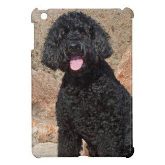 USA, California. Labradoodle Sitting iPad Mini Case