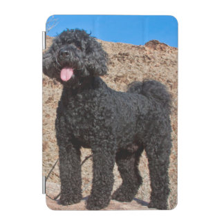 USA, California. Labradoodle Standing iPad Mini Cover