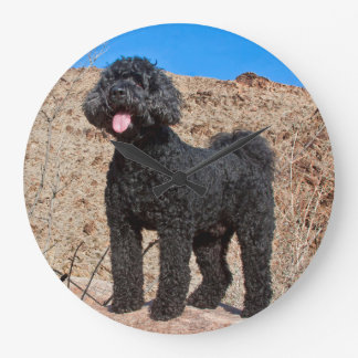 USA, California. Labradoodle Standing Large Clock