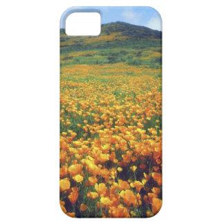 USA, California, Lake Elsinore. California iPhone 5 Case