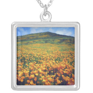 USA, California, Lake Elsinore. California Silver Plated Necklace