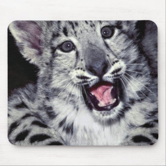 USA, California, Los Angeles County. Close-up Mouse Pad