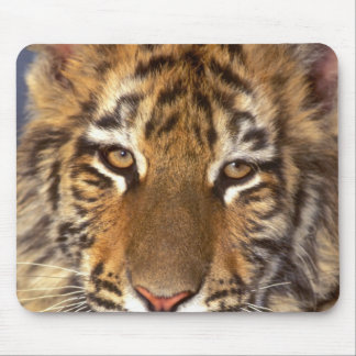 USA, California, Los Angeles County. Portrait 2 Mouse Mat