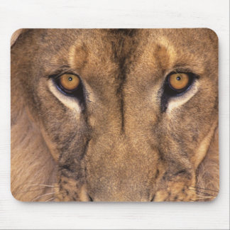 USA, California, Los Angeles County. Portrait 3 Mouse Mat