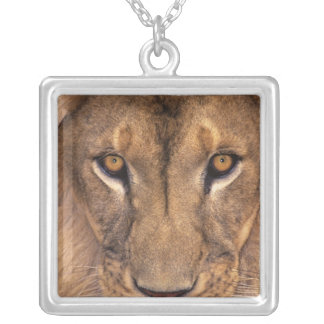 USA, California, Los Angeles County. Portrait 3 Silver Plated Necklace