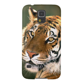 USA, California, Los Angeles County. Portrait 5 Case For Galaxy S5