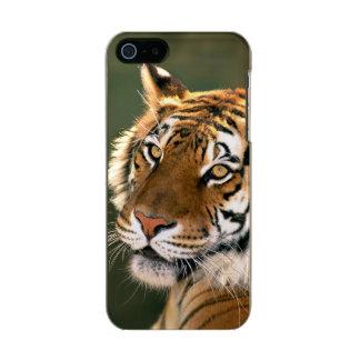 USA, California, Los Angeles County. Portrait 5 Incipio Feather® Shine iPhone 5 Case