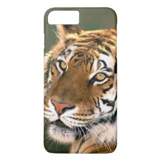 USA, California, Los Angeles County. Portrait 5 iPhone 8 Plus/7 Plus Case