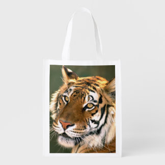 USA, California, Los Angeles County. Portrait 5 Reusable Grocery Bag