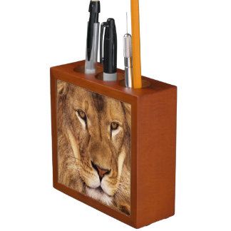 USA, California, Los Angeles County. Portrait Desk Organiser