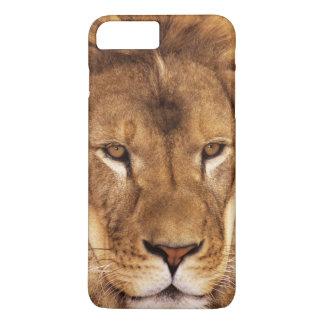 USA, California, Los Angeles County. Portrait iPhone 8 Plus/7 Plus Case