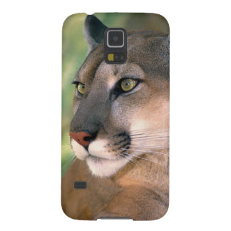 USA, California, Los Angeles County. Portrait of Galaxy S5 Case