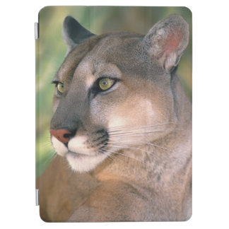 USA, California, Los Angeles County. Portrait of iPad Air Cover