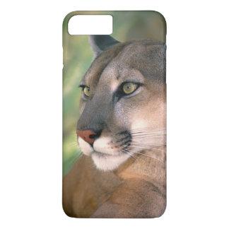 USA, California, Los Angeles County. Portrait of iPhone 8 Plus/7 Plus Case