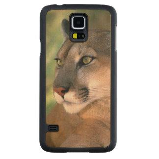 USA, California, Los Angeles County. Portrait of Maple Galaxy S5 Slim Case