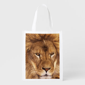 USA, California, Los Angeles County. Portrait Reusable Grocery Bag