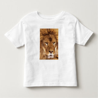 USA, California, Los Angeles County. Portrait Toddler T-Shirt