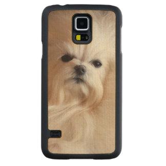 USA, California. Maltese Lying Down Maple Galaxy S5 Slim Case