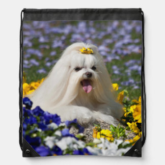 USA, California. Maltese Lying In Flowers Drawstring Bag