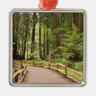 USA, California, Marin County, Muir Woods Christmas Ornament
