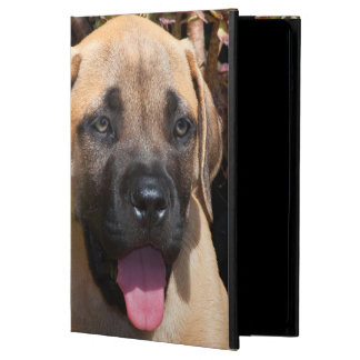 USA, California. Mastiff Puppy Portrait Cover For iPad Air