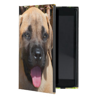 USA, California. Mastiff Puppy Portrait Cover For iPad Mini