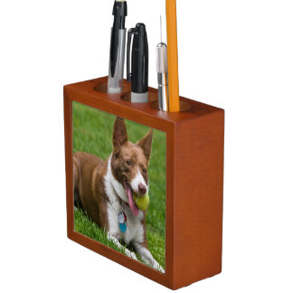 USA, California. Mcnab Shepherd Waiting Desk Organiser