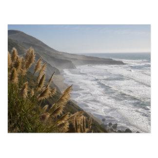 USA, California, Mendocino Coast Postcard