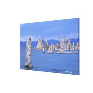 USA, California, Mono Lake Gallery Wrap Canvas