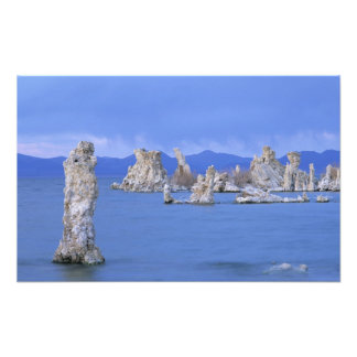 USA, California, Mono Lake Photo Print